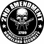 2ND AMENDMENT  1789  AMERICA'S ORIGINAL  HOMELAND SECURITY - Product Image