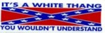 IT'S A WHITE THANG YOU WOULDN'T UNDERSTAND (Confederate Flag) - Product Image