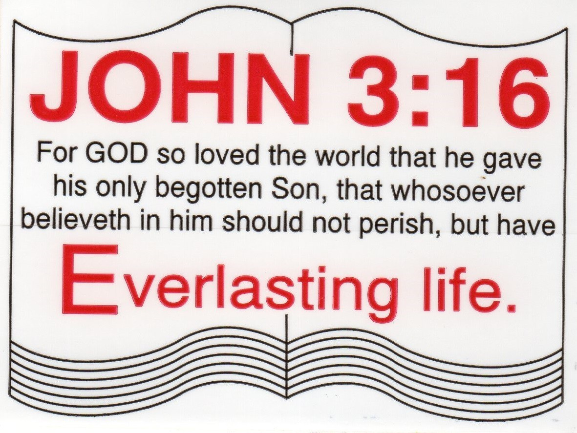 "JOHN 3:16 Sticker 3"" x 4"" - Product Image"