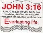 "JOHN 3:16 Sticker 3"" x 4"" - Product Image"
