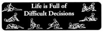 Life is Full of Difficult Decisions (Sexual Positions) - Product Image