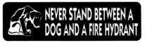 NEVER STAND BETWEEN A DOG AND A FIRE HYDRANT - Product Image